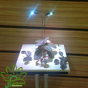 نور مورد نیاز گیاهان آپارتمانی با استفاده از نور مصنوعی