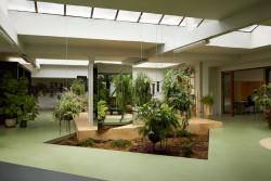 inspiring-studio-office-design-with-hanging-potted-plants-and-garden-space-also-glass-door-and-wooden-door-frame-ideas