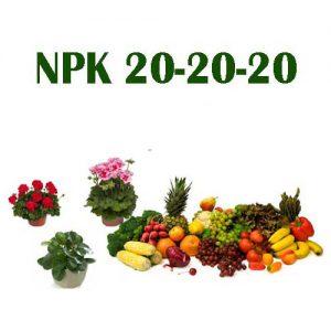 کود npk 20-20-20 مدل آماده