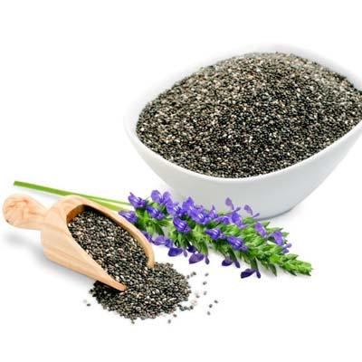 بذر گیاه دارویی چیا