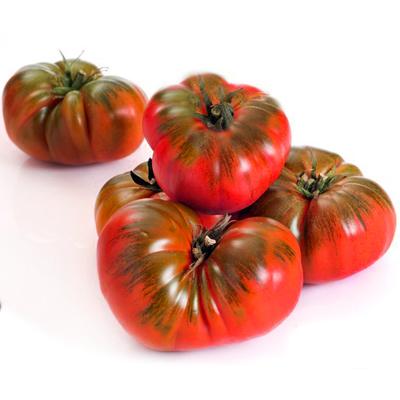 بذر گوجه موچامیل دورنگ