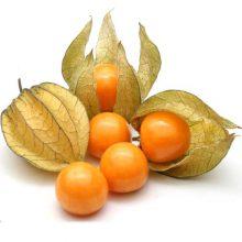 بذر فیسالیس زرد آناناسی
