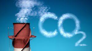 دی اکسید کربن و نقش آن در رشد گیاهان